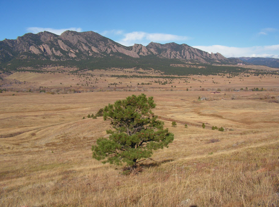 events-fieldtrips-virtual-flatirons